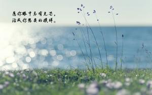 八月你好沿途的风景说说图片