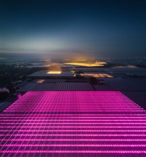 航拍荷兰的LED温室