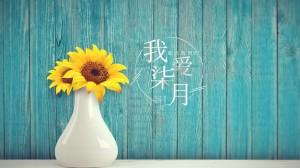 七月你好唯美清新向日葵壁纸图片