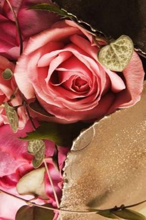 唯美复古的玫瑰花