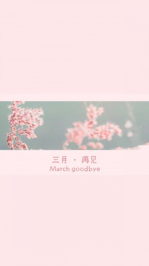 阳光的三月再见