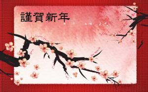 鸟语花香春节图片
