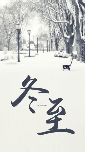 冬至里白雪覆盖公园