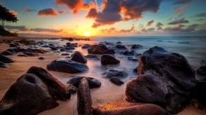 朝气蓬勃日出东升迷人风景摄影