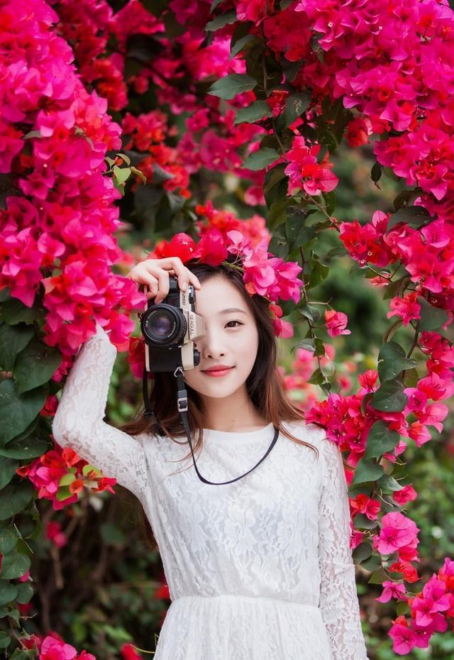 蔷薇花下的花仙子清新动人