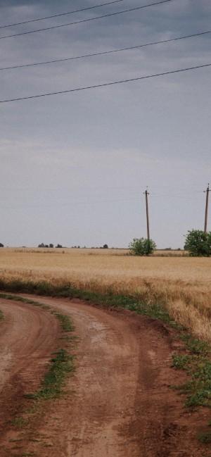 田园治愈风光摄影图片手机壁纸