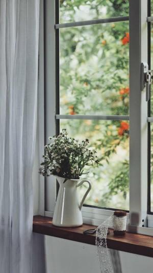 花瓶中清新淡雅的小雏菊图片壁纸