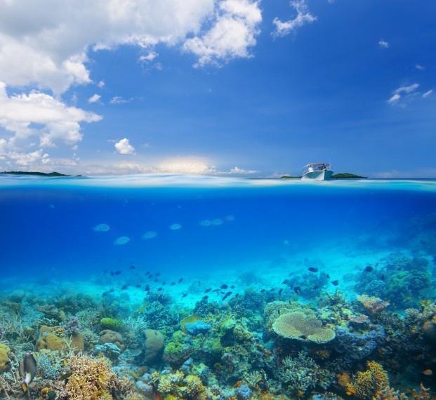 海岸与清透海底景色图片