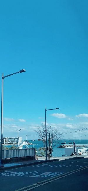 清新意境随拍自然风光高清手机壁纸