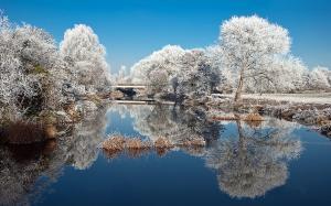二十四节气之小雪唯美雪景图片