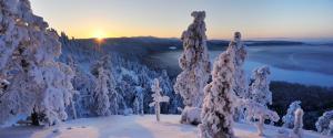 芬兰冬天雪景
