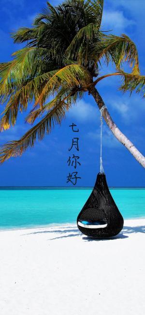 海边棕榈树七月你好的图片带字
