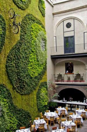 墨西哥一个酒店的垂直花园