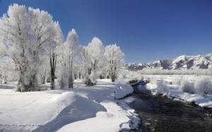 唯美壮丽的大自然雪景