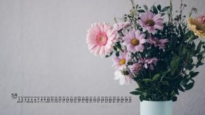 2020年5月清新文艺花卉图片日历壁纸