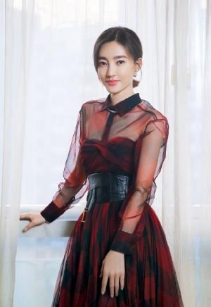 王丽坤优雅气质写真图片