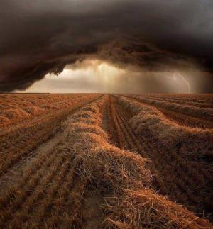 田野上空的风暴