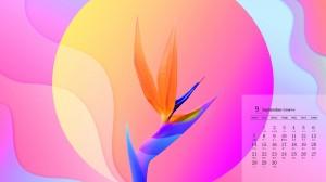 2020年9月简约幻彩设计日历壁纸