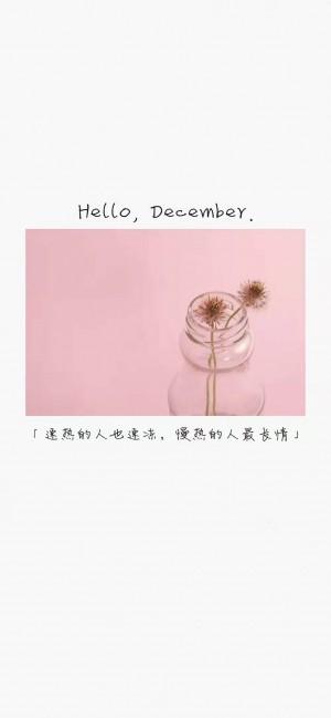 十二月你好唯美意境文字图片壁纸