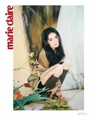 杨幂棕色套装俏皮可爱灵动写真图片