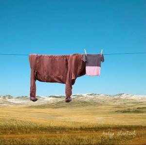 草原上的牛羊创意图片