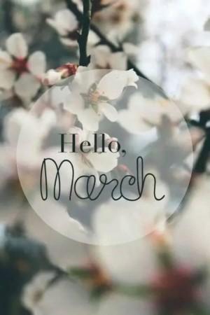 二月再见三月你好微信朋友圈配图