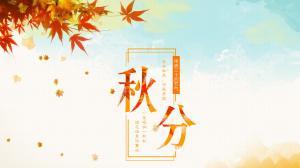 二十四节气之秋分背景图片