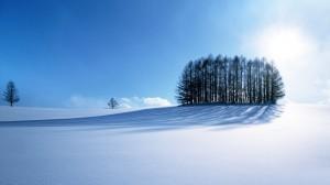 冬日意境雪景高清风景桌面壁纸