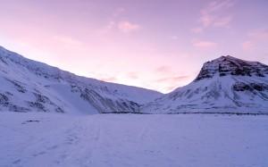 冬天你好,美丽的雪景