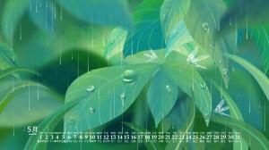 2020年5月护眼绿植日历壁纸