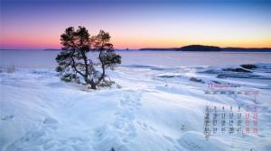 2020年11月雪后美景迷人高清日历壁纸