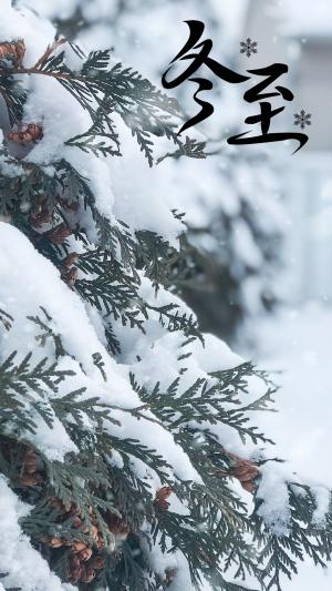 2020冬至节气绝美雪景