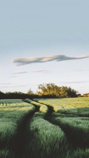 清新养眼自然风光手机壁纸