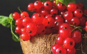 诱人的新鲜水果红醋栗