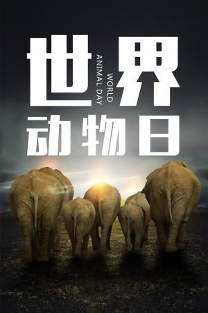 世界动物日之大象