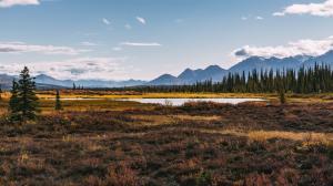 阿拉斯加美丽的秋天风景图片