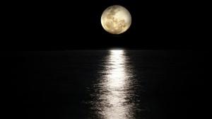 中秋节一起来赏月