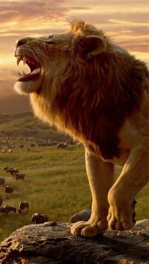 狮子王最新剧照高清手机壁纸