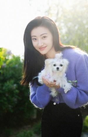 景甜紫色毛衣阳光写真图片