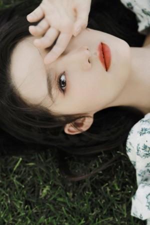 李沁夏日氧气感绿意写真图片