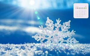 2020年12月冬天唯美雪花日历壁纸