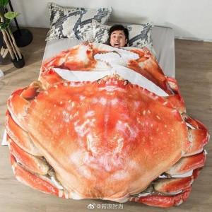 一个逗比脑洞:大闸蟹被子