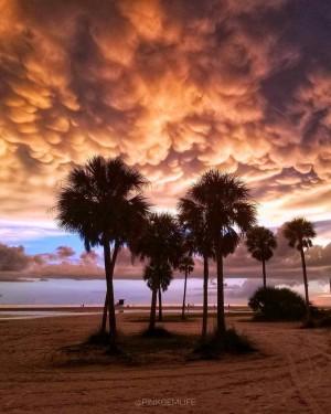 佛罗里达的乳状云
