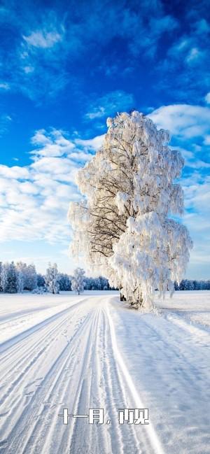 十一月再见唯美雪景文字图片壁纸