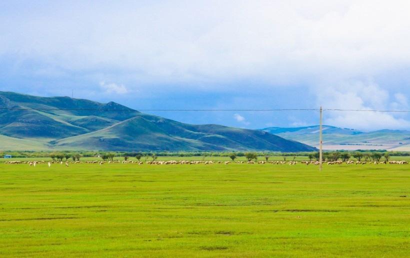 內蒙古呼倫貝爾草原風景圖片