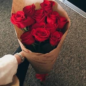 娇滴玫瑰花