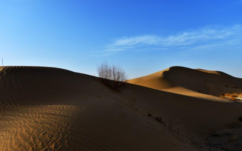 内蒙古鄂尔多斯恩格贝沙漠