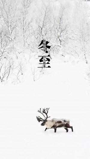冬至,雪地里行走的小鹿