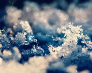 霜降可爱冰霜