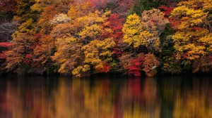 秋天多彩自然风光图片桌面壁纸